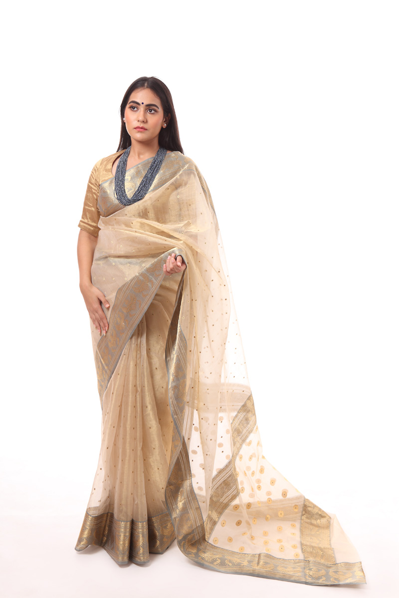 pure-hand-woven-beige-chanderi-tissue-katan-silk-saree-with-necklace-border