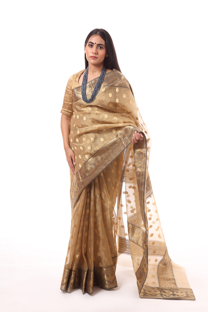 pure-hand-woven-dark-beige-tissue-chanderi-katan-silk-saree-with-necklace-border