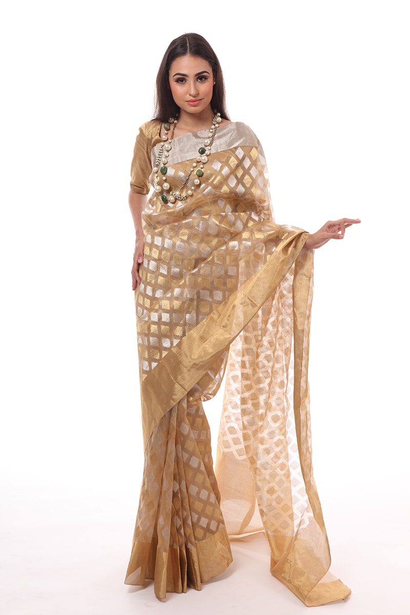 pure-hand-woven-chanderi-katan-silk-dark-beige-saree-with-ghani-diamond-butis