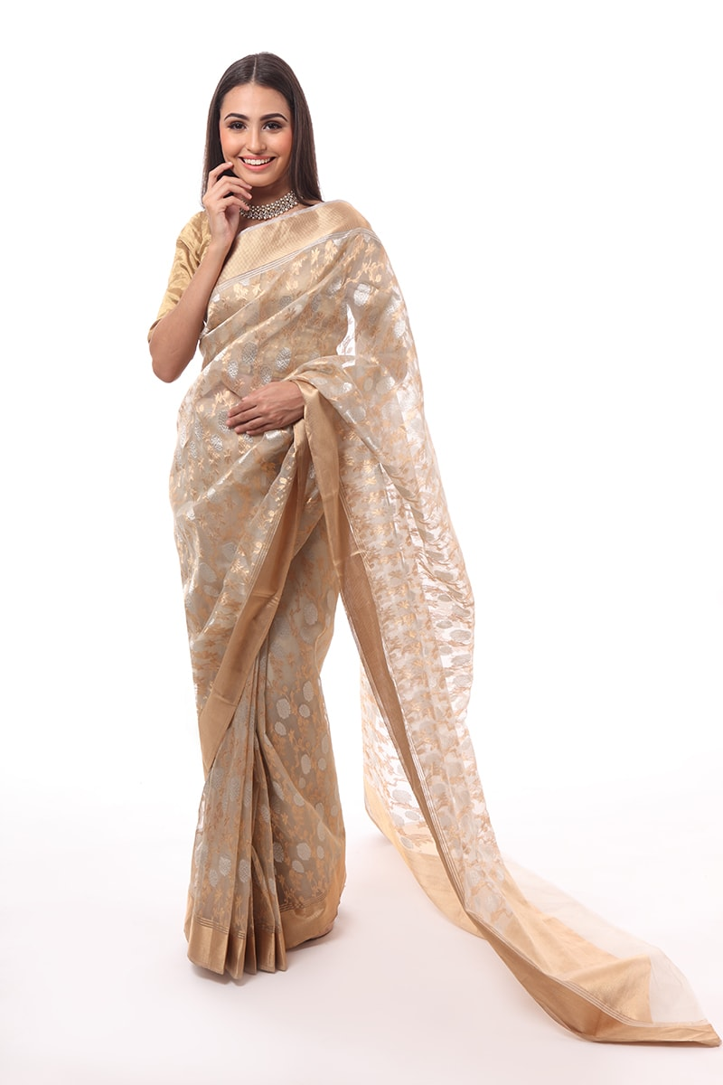 pure-hand-woven-chanderi-light-grey-eknaliye-jangla-saree-with-dadidar-border