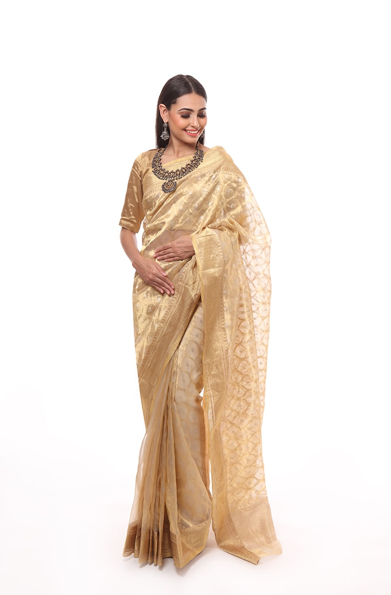 pure-hand-woven-gold-chanderi-katan-silk-saree-with-all-over-eknaliye-jangla