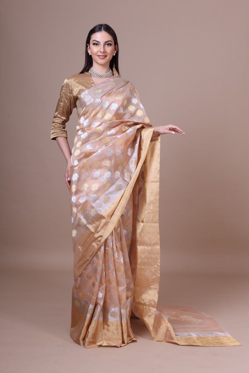 pure-hand-woven-gold-peach-chanderi-katan-silk-saree-with-all-over-eknaliye-butis