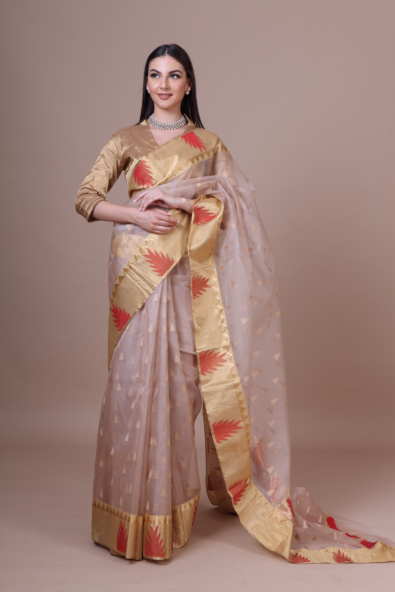 pure-hand-woven-beige-chanderi-katan-silk-saree-with-temple-border